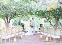 "wedding photo - Amanda Nistor On Instagram: ""married In An Orange Grove? Yes Please"