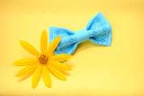 wedding photo - EMBROIDERED bright blue bow tie