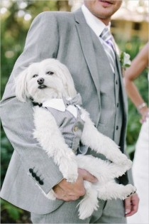 wedding photo - Pets At Weddings: 63 Cutie Ideas