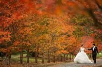 wedding photo - I Do!