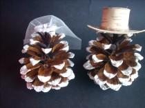 wedding photo - Rustic Wedding Cake Topper Pine Cone ,Winter wedding cake toppers,Mr & Mrs Pine cone Cake Topper,Frosted pinecones