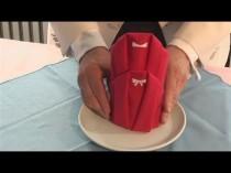 wedding photo - How To Make Tango Napkin