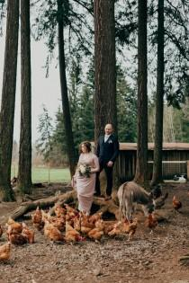 wedding photo - Cozy Vancouver Island Cabin Wedding At Dolphins Resort