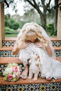 wedding photo - Dogs In Weddings