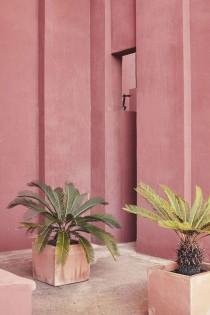 wedding photo - I Spy: Pastel Pink   Green.