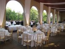 wedding photo - Wedding Lovliness