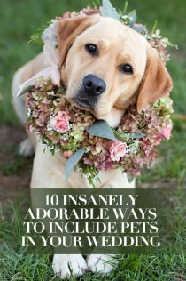 wedding photo - 10 Insanely Adorable Ways To Include Pets In Your Wedding