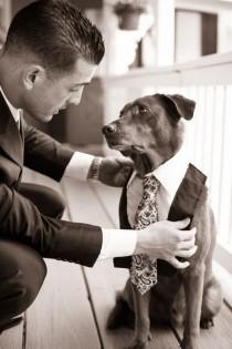 wedding photo - Una Imagen Vale Más Que Mil Palabras. Esto Explica Por Qué Tu Perro Debe Estar En Tu Boda