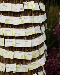 wedding photo - Outdoor Escort Card Displays