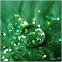 wedding photo - Damn Fresh Pics: Beautiful Examples Of Green Photography