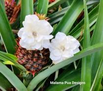 wedding photo - BRIDAL HAIR FLOWERS - Pair of Ivory Hawaiian Delphiniums, Beach Wedding Hair Pins, Fascinator, Headpiece, Crystal Center, Silk flower clip