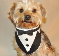 wedding photo - Dog Tuxedo, Dog Wedding Attire, Black and White Wedding Tuxedo, Formal Wedding Collar for and size Pets