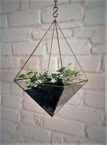 wedding photo - Hanging glass terrarium. Space saving. Octahedron. Geometric.Hanging garden. Gift for Her. Air plant. Christmas gift. Stained glass