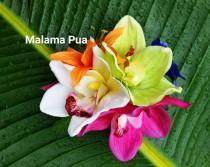 wedding photo - TROPICAL HAIR CLIP, Hair Accessory, Silk flower clip, hair flower, Wedding headpiece, Bridal hair piece, Hawaiian, Fascinator, Beach Wedding