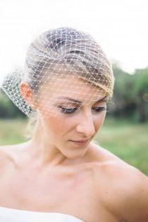 wedding photo - simple Birdcage veil