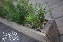 wedding photo - Rustic Woodland Wedding Table Centerpiece for Evergreen Tree Favor Barnwood Palette Reclaimed Repurposed Wood Lumberjack Baby Shower Baptism