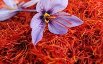 wedding photo - High Quality of Saffron, 0 Pure and Organic Saffron, Guarantee The Best Quality Of Saffron