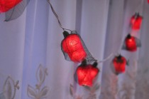 wedding photo - 35 Romance Red Rose String lights for Patio,Wedding,Party and Decoration fairy lights