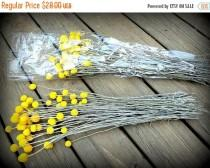 wedding photo - Sale Save 20% 25 craspedia-dried naturally-Long stem-Craspedia-Billy Balls-Billy Buttons-Dried Yellow Wedding Flowers-Bundle of 25