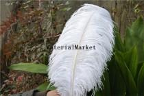 wedding photo - 50pcs/lot 18-20inch White Ostrich feather plume for Wedding,Table Centerpieces A Quality for home decor
