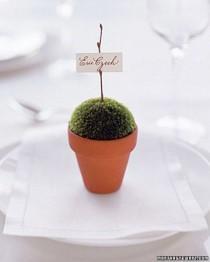 wedding photo - Wedding Themes