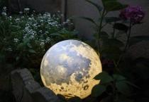 wedding photo - vivid moon