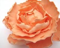 wedding photo - Peony - Peach/Light Coral. Gumpaste flowers, cake toppers, gum paste flowers, sugar paste