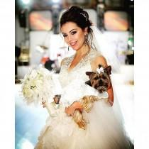 wedding photo - Couture Bridal Gowns