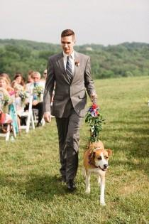 wedding photo - 24 Wedding Pups That Are Just As Cute As Any Flower Girl Or Ring Bearer