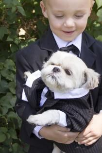 wedding photo - Pet Friendly Weddings: Including Pets In Big Day Plans