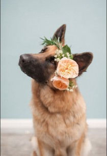 wedding photo - Wedding Flower Crowns - Feel27.com