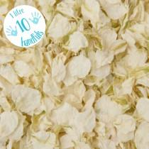 wedding photo - 1 Litre approx 10 guests Natural Wedding Confetti Eco-Friendly Biodegradable Dried Delphinium Petals Vanilla, White / Ivory