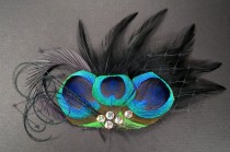 wedding photo - Gothic mini veil black feather headpieces peacock eye dark birdcage goth bird cage veil feathers hair pieces