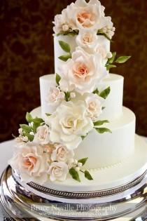 wedding photo - Wedding Photographer Sussex, Surrey & Hampshire