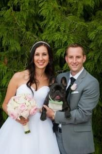 wedding photo - 32 Photos That Prove Your Pet Should Be In Your Wedding