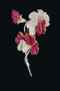 wedding photo - Gems & Jewelry