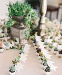 wedding photo - Succulent & Artichoke Weddings Centerpieces