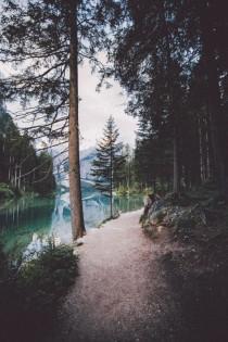 wedding photo - Into The Woods