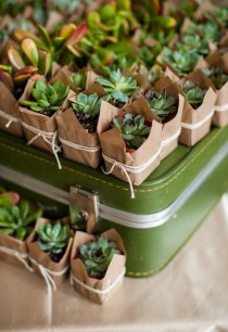 wedding photo - 105 Creative Succulent Wedding Decor Ideas