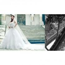wedding photo - Alessandro Angelozzi 70 -  Designer Wedding Dresses