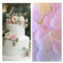 wedding photo - Confetti ECO  Petals Wedding Confetti  BIODEGRADABLE  ORGANIC Wedding Toss Dissolve  Beautiful