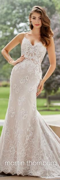 wedding photo - Allover Lace & Organza Fit & Flare Wedding Dress- 118270 Cabaletta
