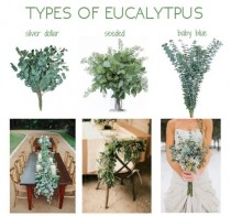 wedding photo - Check Out These Ideas To Include Eucalyptus In Your Wedding!