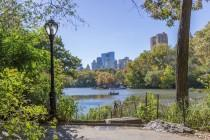 wedding photo - How To Get Married In Central Park