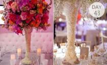 wedding photo - Ideas & Advice
