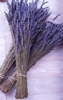 wedding photo - BEST VALUE Lavender 8.5 oz Dried Box 750 Stems in 3-4 bunches bundle 2018 Fragrant bouquets, crafts weddings Grosso English seller SALE
