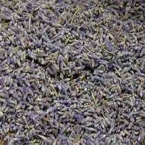 wedding photo - Dried Lavender buds  - Perfect For Rustic Country Weddings