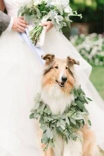 wedding photo - Courtesy Of Gordana Aleksova