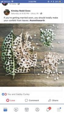 wedding photo - Leaves As Wedding Confetti