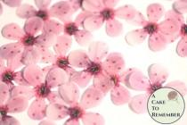 "wedding photo - 48 wafer paper cherry blossom flowers, 1"" across. Edible flowers for wedding cakes, cupcake toppers, and cake pops. Cake decorating ideas"